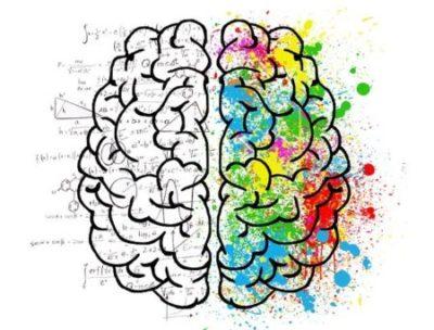 左右腦分工理論說明了左腦掌管語言、右腦掌管圖像